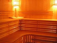 Сауны, бани, хаммамы (турецкая баня) - строительство под ключ